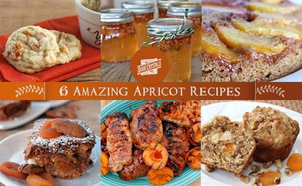 6 Amazing Apricot Recipes