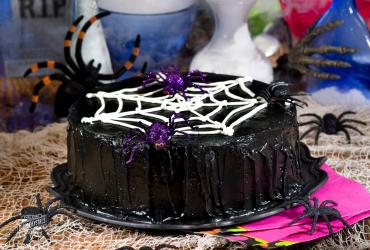 Along Came a Spidery Chocolate Cake