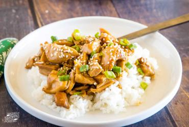 Crock Pot Teriyaki Chicken dixie
