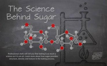 The Science of Sugar & How it Plays a Vital Role in Baking