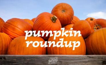 10 Pumpkin Recipes for the Fall Season