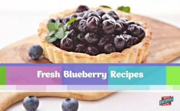 Fresh Blueberry Recipes Dixie